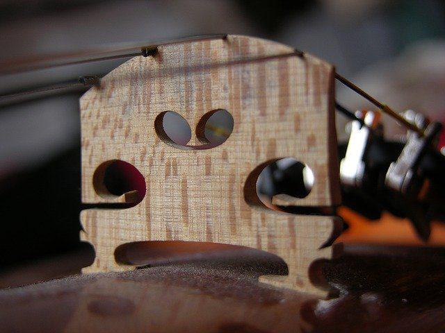 Madalin nu renunta la Stradivarius